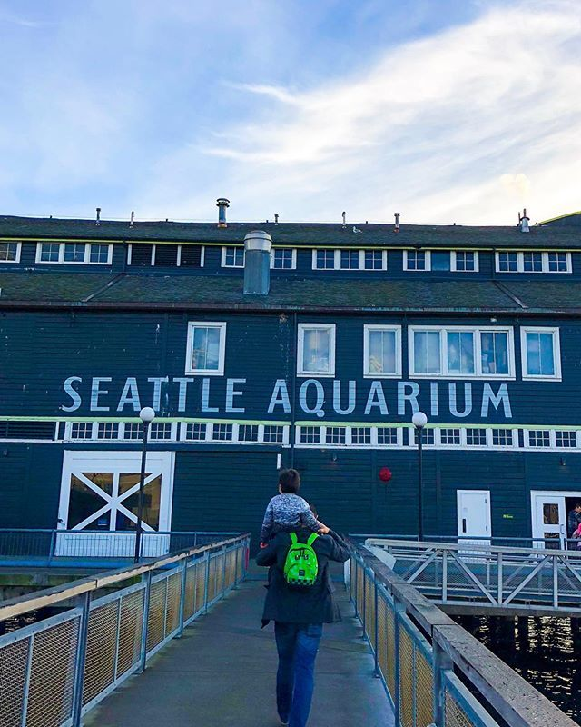 Photo from SeattleAquarium on Instagram on traveledqstyle
