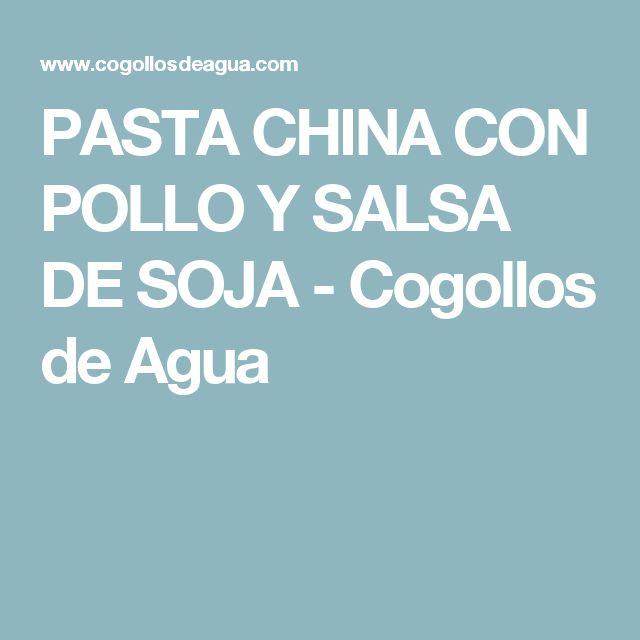 PASTA CHINA CON POLLO Y SALSA DE SOJA - Cogollos de Agua