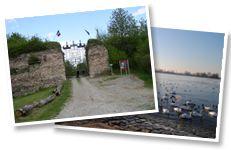 Fort-Louis, Alsace (Mairie de la commune de Fort-Louis) - Fort-Louis. J.B. wilde de Rijn oversteken bij het fort Louis du Rhin , bij Speyer en Mainz.   blz.109