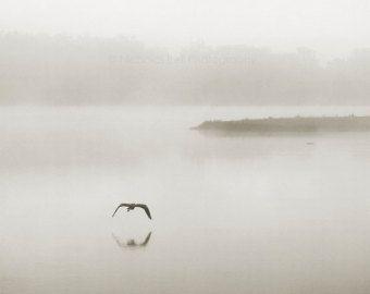 Les 25 meilleures id es de la cat gorie photographie for Photographie minimaliste
