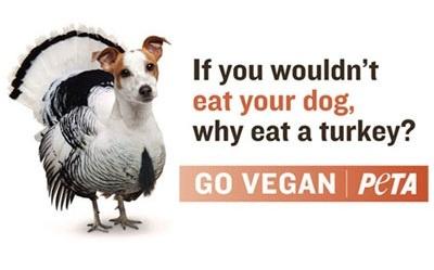 1000 Images About Peta On Pinterest Animal Activist