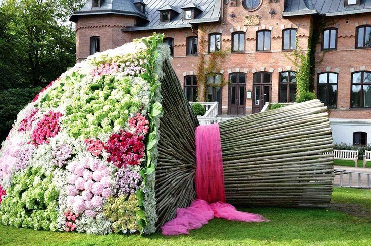 цветы на день рождения: 21 тыс изображений найдено в Яндекс.Картинках