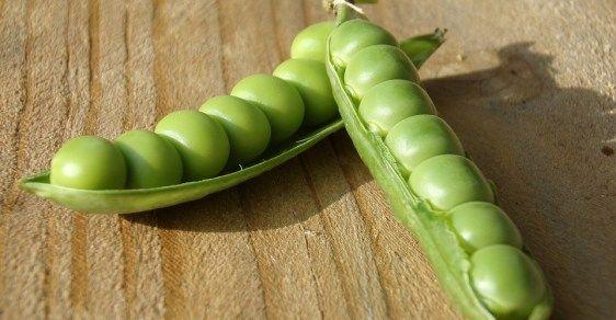 Jezte zelený hrášek každý den a zapomeňte na stres a úzkost