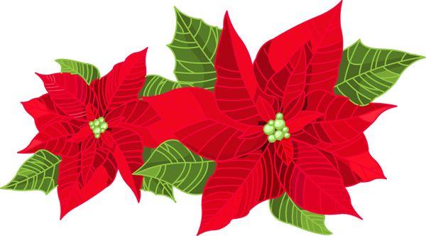 joyous christmas poinsettia clip art clip art holiday scrapbook rh pinterest com Christmas Tree Clip Art christmas poinsettia clipart
