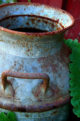 Old rusty milk can