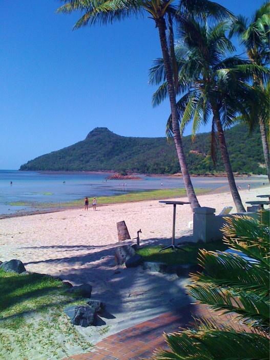 The Beach House, Hamilton Island, QLD #summer #beach