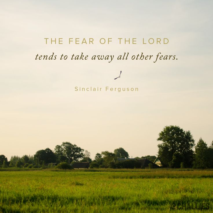 """""""The fear of the Lord tends to take away all other fears."""" (Sinclair Ferguson)"""