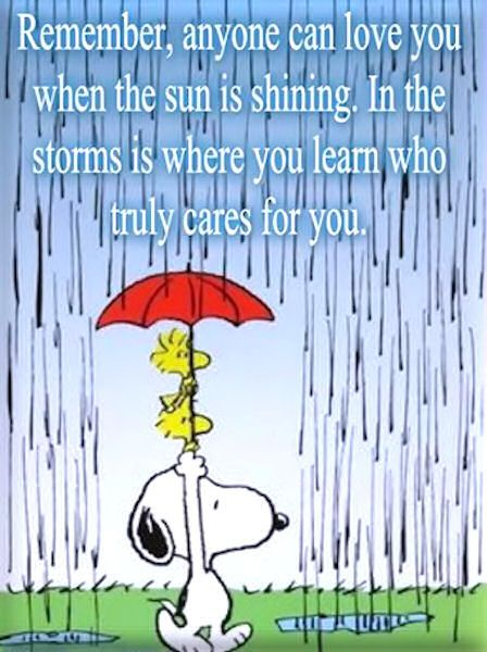 In the storms is where you learn who cares life quotes quotes quote life truth wise advice wisdom snoopy life lessons woodstock