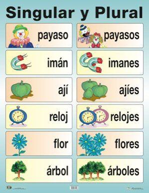 sustantivos-comunes-clasificación-morfológica