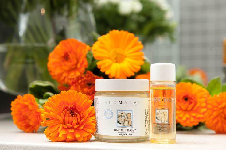 AROMABABY Barrier Balm ™ har vært beroligende for huden i over 20 år. Den eneste balsam i sitt slag, utviklet for å forebygge eller lindre bleieutslett, og annen tørr hud.  Smelter ved kontakt med huden og gir en naturlig og organisk løsning. Beroligende naturlige økologiske oljer pleier og tilfører fuktighet, danner en tynn barriere som  beskytter huden. Fri for parfyme og kjemikalier. Beriket med organisk nattlysolje, vitamin E og calendula olje.
