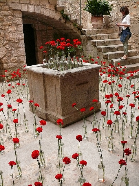 Girona , Temps de Flors 2012 (69) by calafellvalo, via Flickr