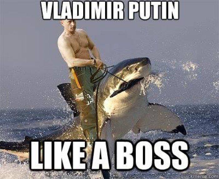 Vladimir Putin meme - http://www.jokideo.com/