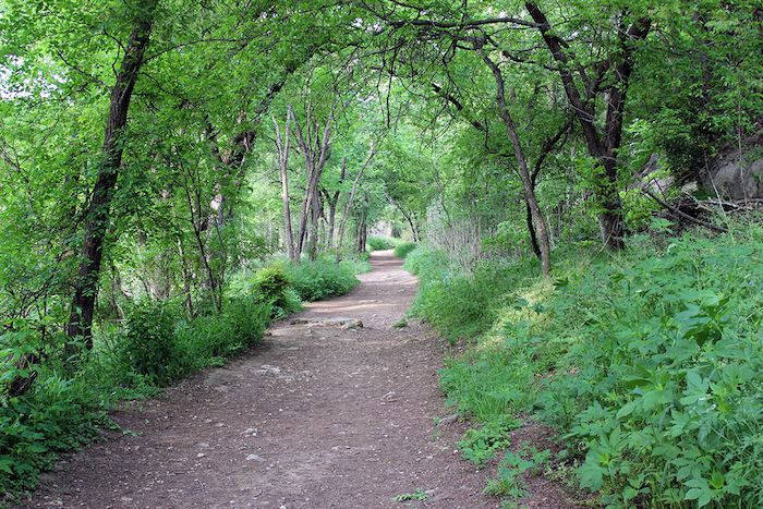 Step by Step Guide to Austin's Long Anticipated Violet Crown Trail