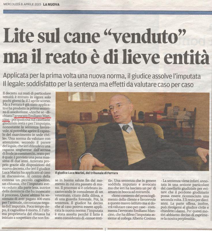 #Tribunale #Ferrara #Penale #Archiviazione