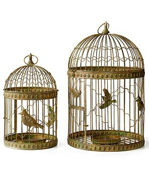 12 Best Bird Cages Images On Pinterest Bird Cages