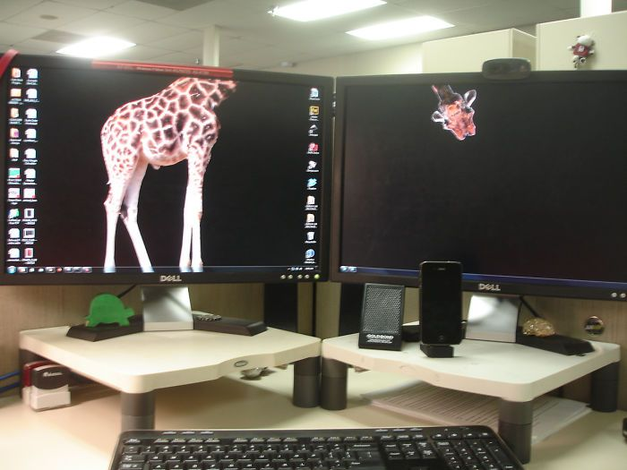 51 Hilariously Genius Desktop Wallpapers That Will Make You Look Twice Creative Desktop Computer Monitor