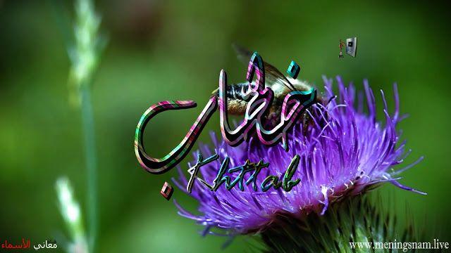 معنى اسم خطاب وصفات حامل هذالاسم Khattab Plants