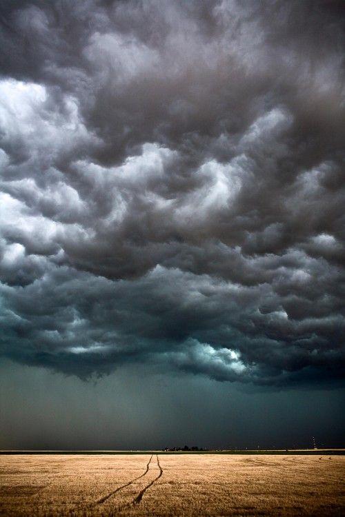 The Big Cloud, Tracks Through The Field, Kansas May 2008. Camille Seaman