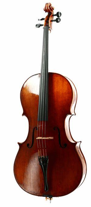 #cello Naiara Maiztegui - Cremona 2014