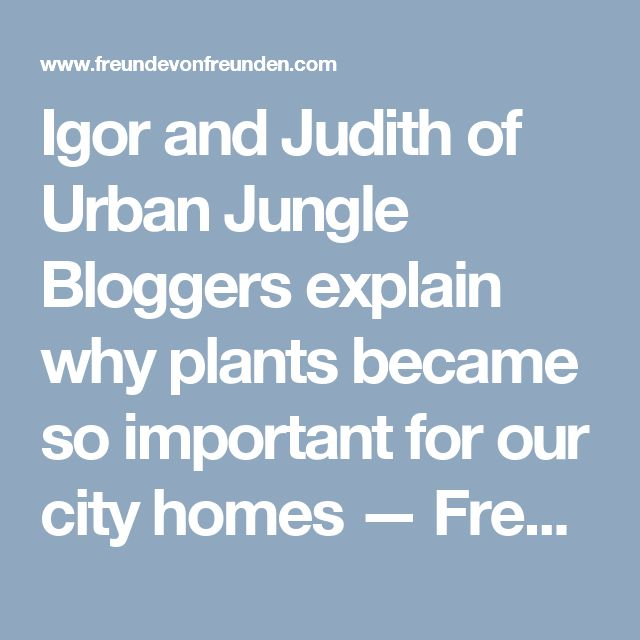 Igor and Judith of Urban Jungle Bloggers explain why plants became so important for our city homes — Freunde von Freunden