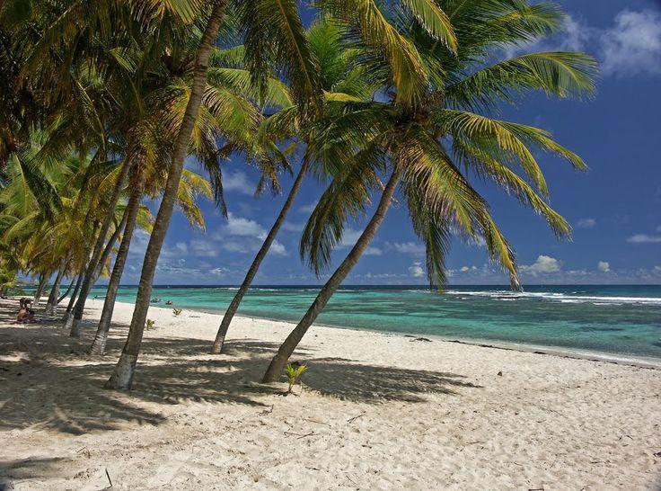 La plage du Souffleur sur l'île de la Désirade en Guadeloupe est une belle et longue plage de 2km, de sable fin, l'une des plus agréables de l'île de la Désirade. C'est une plage pour les amateurs de snorkeling. Accès : remonter vers le nord la route de la Désirade, la D207 Activités : Snorkeling…