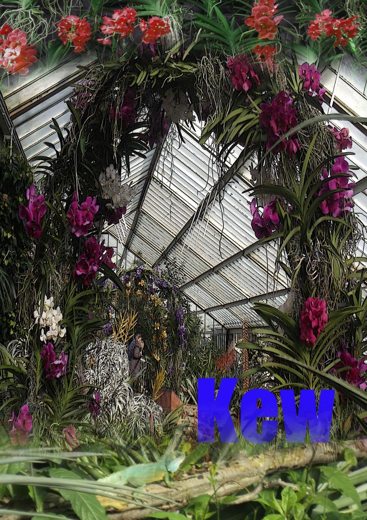Kew Gardens Initial Design William Dunn ©