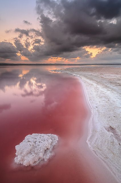 Salt sea; the pink colour comes from the overabundance of sodium