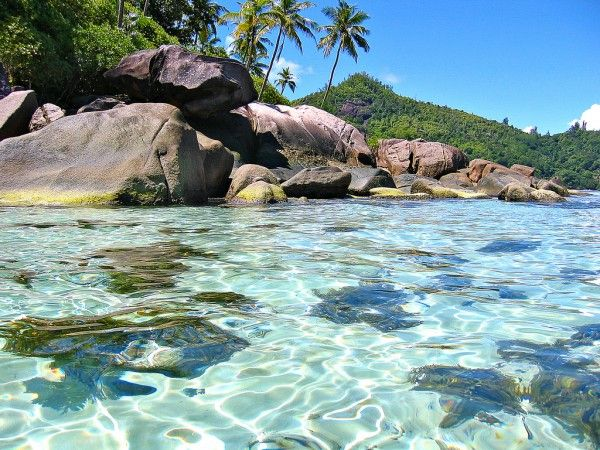 Seychelles Islands:  On my list of places to visit...located in the Indian Ocean, some 1,600 km east of mainland Africa