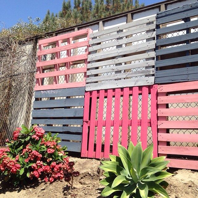 Colorful way to cover up a chain linked fence shopruche home love garden pinterest ps - Garden ideas to hide fence ...