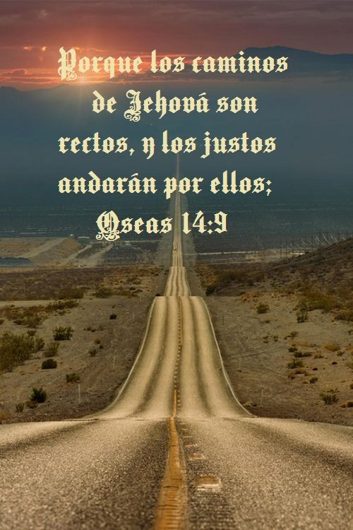 Versiculos Biblicos De Amor: 296 Best Images About VERSICULOS BIBLICOS On Pinterest