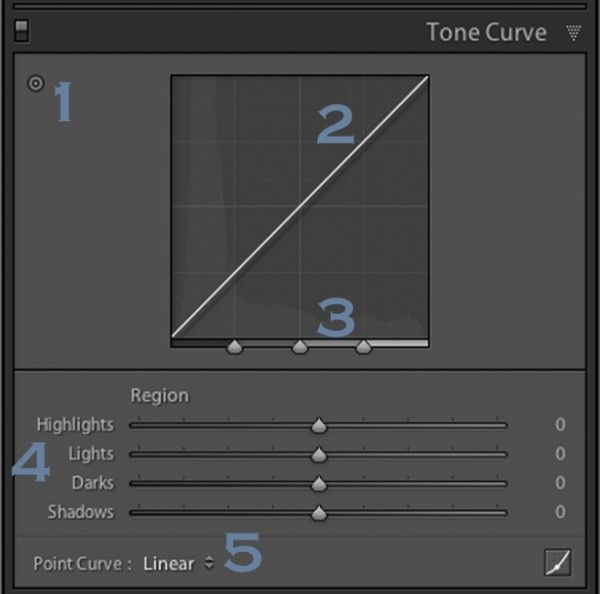 Lightroom's Tone Curve Explained - Digital Photography School » Post Production Tips