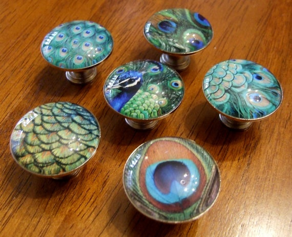 Peacock room! Set of 6 PEACOCK FEATHER Glass Domed Photo by JoanOfArtCreations, $36.00