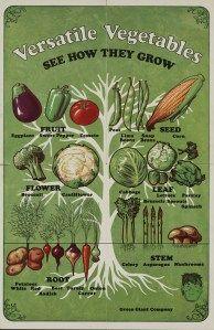 https://whatscookinvt.wordpress.com/2012/04/18/vegetable-posters-kids-nutrition/