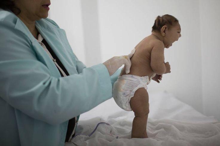Margaret Chan har i en tale rettet kritik mod de lande, der er hårdest plaget af zika-virussen.