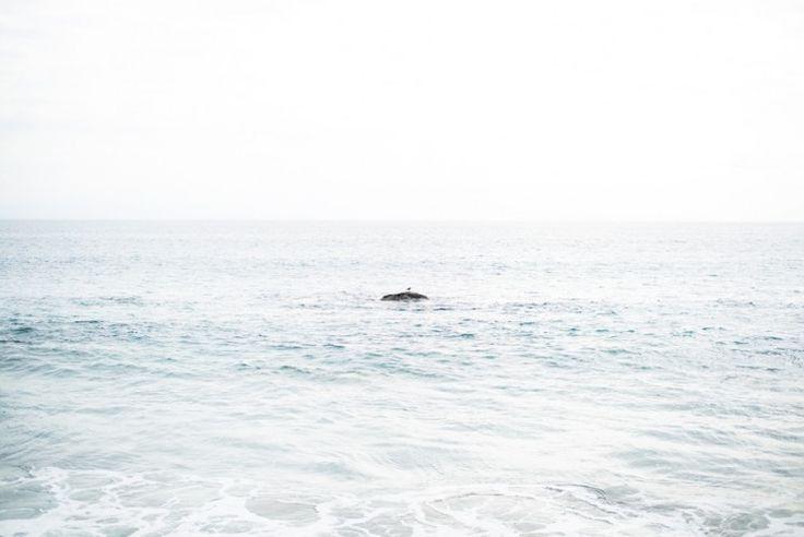 Small island off the California coast