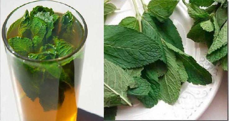 Спасительный напиток при плохой печени: простой состав, но мощное действие | WebVinegret
