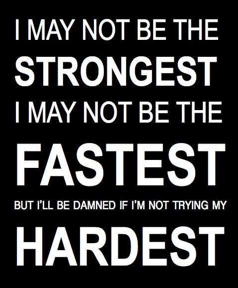 i am trying my hardest.