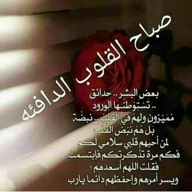 Pin By Chamsdine Chams On صباح مساء الخير Morning Love Quotes Morning Blessings Morning Images