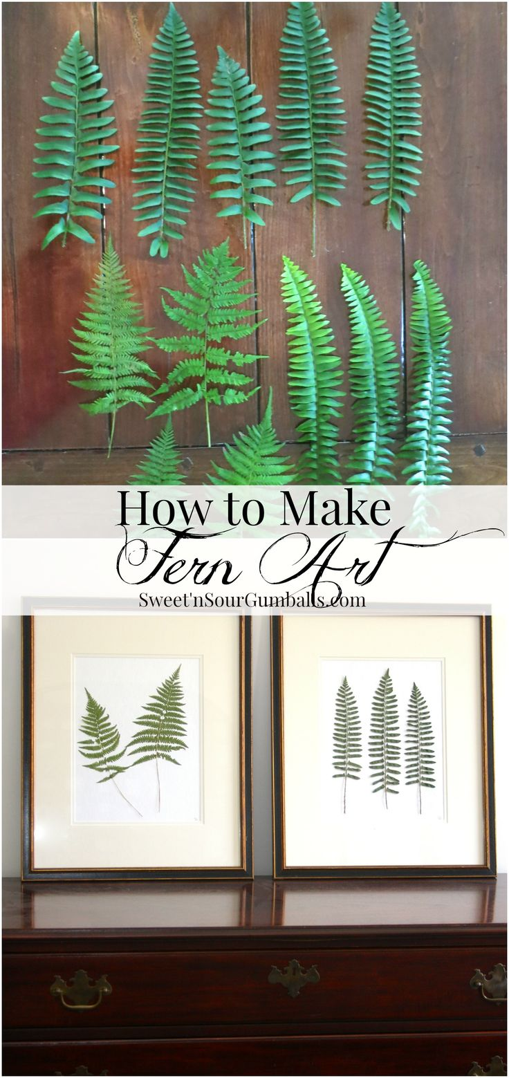 How to make fern art using ferns that have been dried and pressed.