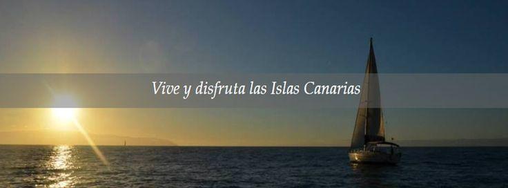 #Avistamiento de #delfines y #ballenas en #Tenerife La costa suroeste de Tenerife es un lugar privilegiado para la observación de cetáceos en libertad ya que su presencia es muy cerca a la costa, y viven ahí todo el año. De esta forma podemos ver calderones tropicales y delfines mulares. Una oportunidad que no puedes dejar escapar ya que #EcheydeTours organiza avistamiento con salidas desde diferentes puntos de la isla. ¡No te lo pierdas! http://www.echeydetours.com/