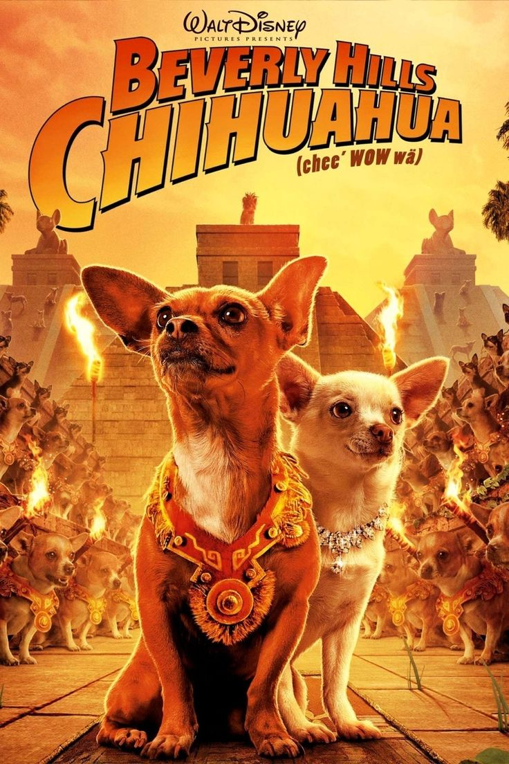click image to watch Beverly Hills Chihuahua (2008)