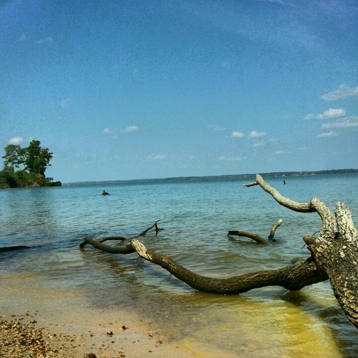 Lake Livingston, Texas My Home Was A 100 Year Old Ranch House In The Trinity