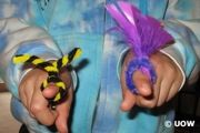STUDENT ACTIVITY: Pollination role-plays -  In this activity, students make small finger puppets and take on the roles of insects, birds and the wind to simulate different methods of pollination.