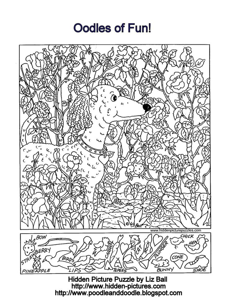 Hidden Picture Puzzle and Coloring Page Featuring a POODLE.