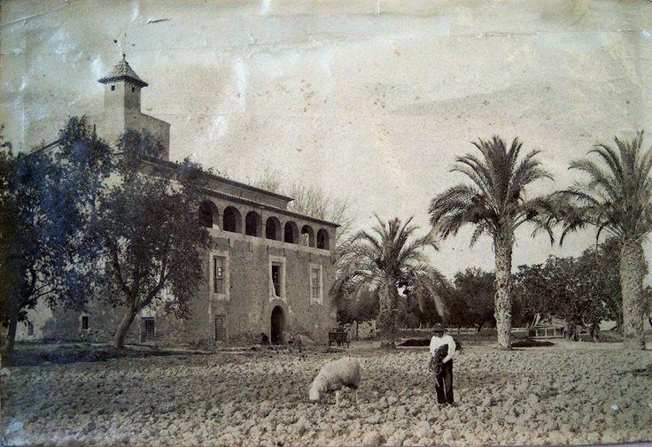 La casa de la Barbera rodedada de tierras de cultivo. http://www.villajoyosa.com/sites/fincalabarbera/informacion/historia.php#