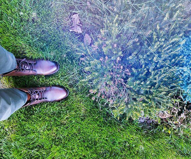 Neon Jesieniara Vibes Juz Niedlugo Zima I Bede Mogla Nareszcie Znowu Prostowac Wszystko Na Niebiesko Jakb Danner Mountain Light Boot Light Boots Hiking Boots