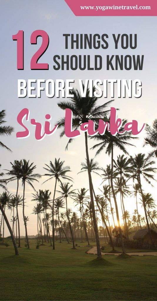 "Yogawinetravel.com: 12 Things You Should Know Before Going to Sri Lanka. To quote Condé Nast Traveler, ""Sri Lanka Is Ready for Its Close-Up"". If you're planning a trip, here are 12 things to know before going to Sri Lanka including visa requirements, what to do and see in Sri Lanka, how to get around and the best time to visit!"