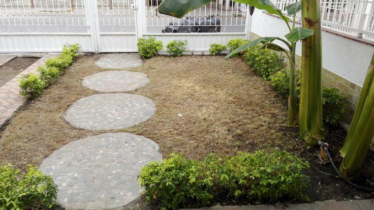 Hay una platanera sembrada en el jardín pero no impide la entrada de coches extras, si no quieres pasto, aqui te cabe el coche.