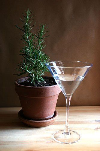 Essential Bar Ingredient: Rosemary Simple Syrup