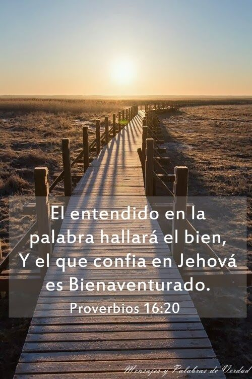 Well-known 36 best PROVERBIOS BÍBLICOS images on Pinterest | The bible, Bible  PY16